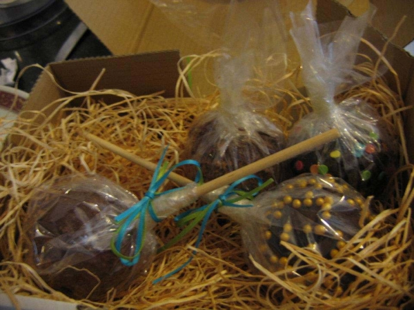 Gourmet chocolate apples in box